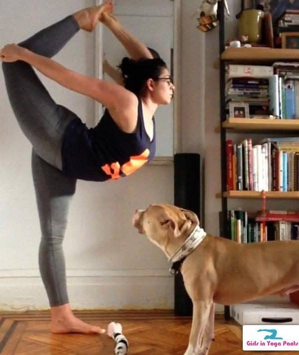 Nationaldogday Girls In Yoga Pants Amp Their Dogs